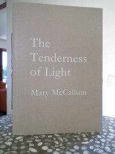 Tenderness of Light by Mary McCallum